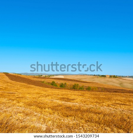 Stubble fields on the hills of Tuscany. Tuscany landscape after harvest. #1543209734