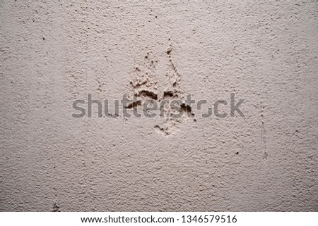 stucco texture, stucco background, textured surface #1346579516