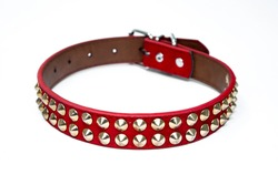 studded dog collar spiked dog collar in leather pet accessory