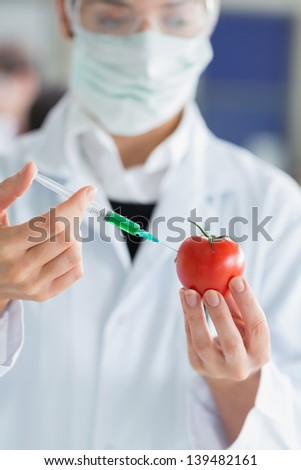 Student injecting liquid in a tomato in laboratory