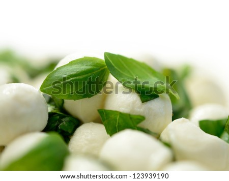 Studio macro of fresh mozzarella cheese balls with basil. Shallow DOF with copy space against a white background.
