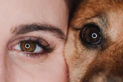 studio portrait of human and dog eyes. pets concept