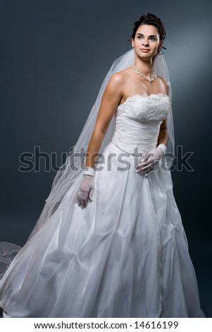 stock photo studio portrait of mature bride wearing elegant white wedding dress 14616199 kitchener erotic craigslist Miami Beach Resort & Spa This four diamond .
