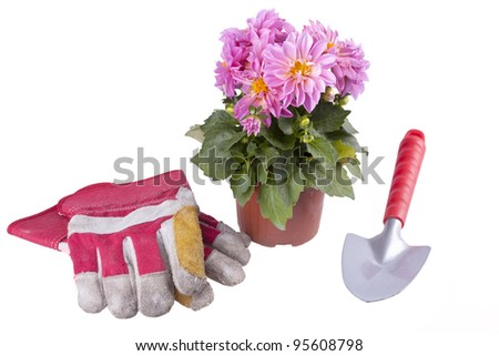 studio-shot of a flower pot and garden utensils, a garden spade and gardening gloves, isolated on a white background.