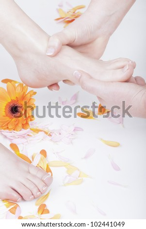 studio shot of a podiatrist ( chiropodist ) at work, massaging womans foot.