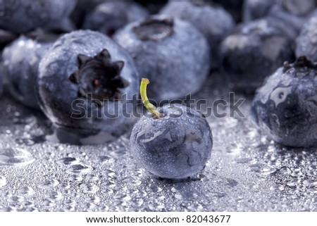 studio- shot of blueberries with water drops