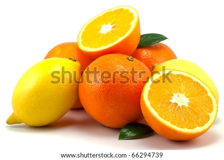 Studio shot of citrus fruits on white background