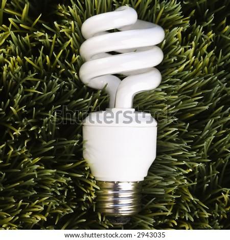 Studio shot of energy saving light bulb laying in grass.