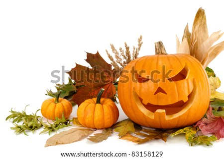 Studio shot of Halloween pumpkins and autumn leaves arranged on white background