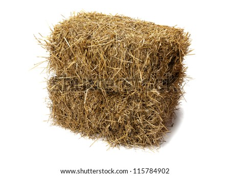 Studio shot of hay isolated on white