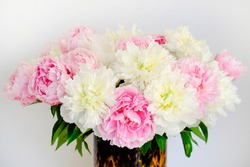 Studio shot of peonies in glass vase with leopard pattern, white background with a lot of copy space for text. Feminine floral composition. Close up, top view, backdrop, flat lay.