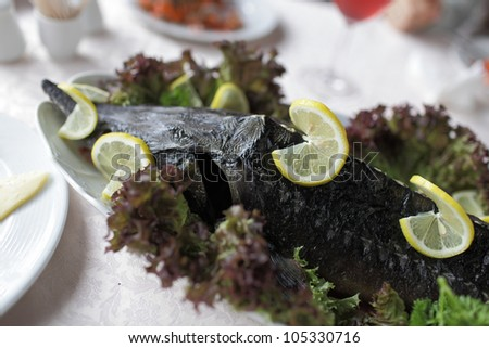 Stuffed sturgeon on a white plate in a russian restaurant