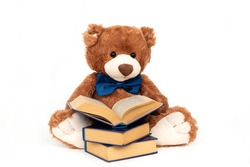 Stuffed teddy bear with book isolated, preschool or kindergarten studying. Plush doll reading fairy tales and stories from textbooks. Intelligent smart cuddly toy with blue bow. Hobbies and relaxation