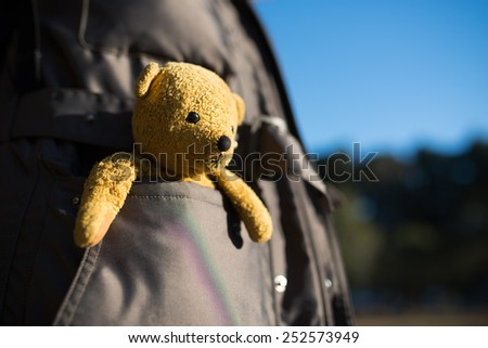 Stuffed toy bear that went into the pocket
