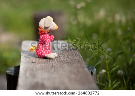 Stuffed toy on old bench in country garden, summer sunny day