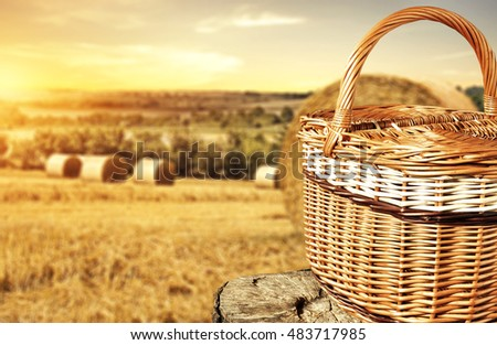 stump and basket #483717985