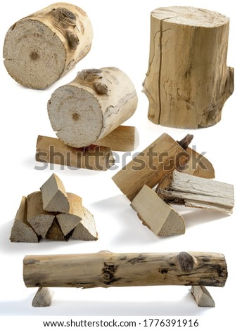 stump and firewood on a white background (blank for your photo manipulations / collages)