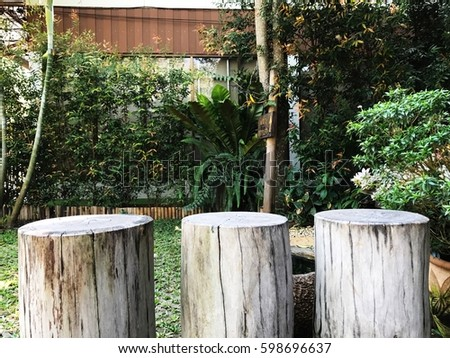Stump chairs at outdoor garden #598696637