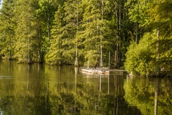Stumpy Lake kayak launch, Virginia Beach, Virginia