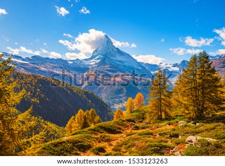 Stunning autumn scenery of famous alp peak Matterhorn capped by snow and yellowed larches on foreground. Swiss Alps, Valais, Switzerland #1533123263