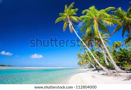 Stunning beach at Tikehau atoll in French Polynesia