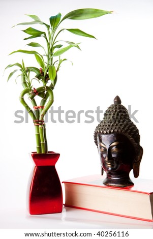 Stunning image of a Buddha statue and bamboo plant