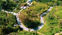 Stunning Road Curves Next to Amazing Tea Plantations From Drone Near Haputale and Ella, Sri Lanka