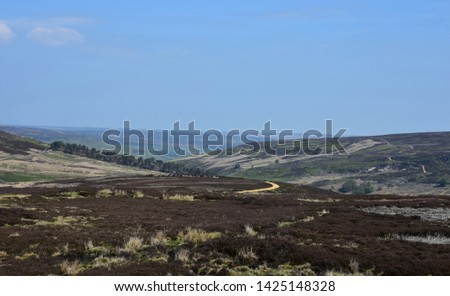 Stunning rural boggy moors as far as the eyes can see.