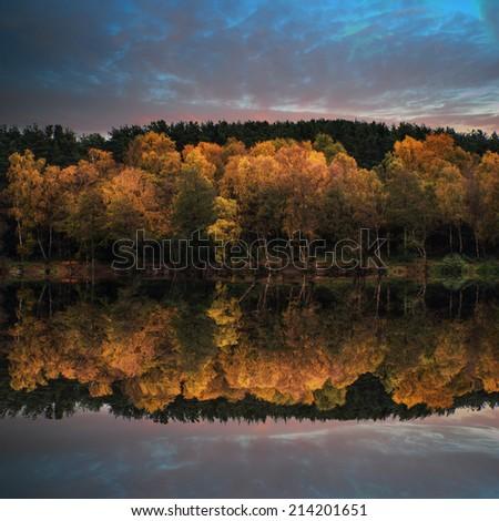 Stunning vibrant Autumn woodland reflected in still lake water landscape