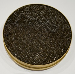 Sturgeon black caviar in tin can