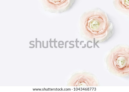 Styled stock photo. Feminine desktop mockup with blush pink buttercup flowers, Ranunculus, on  white table background. Flat lay, top view. Floral pattern. Picture for blog, social media.