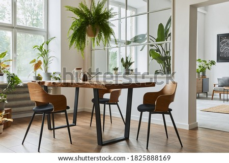 Stylish and cozy interior of dining room with design craft wooden table, chairs, plants, velvet sofa, poster map and elegant accessories in modern home decor. Template. Stockfoto ©