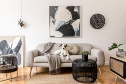 Stylish and scandinavian living room interior of modern apartment with gray sofa, design wooden commode, black table, lamp, abstract paintings on the wall. Beautiful dog lying on the couch. Home decor.
