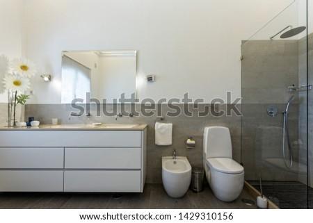 Stylish bath shower rooms in contemporary decor. #1429310156