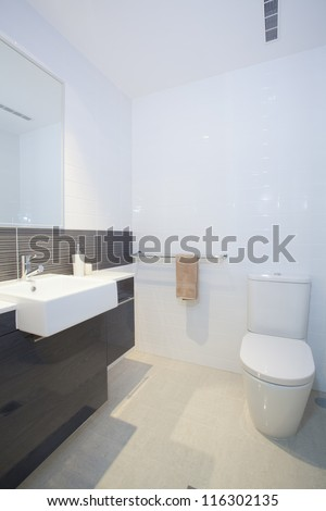 Stylish clean bathroom and toilet