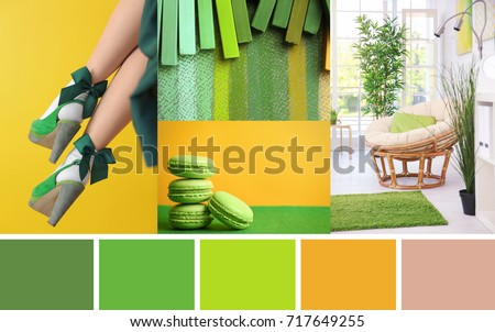 Stylish collage with green color palette