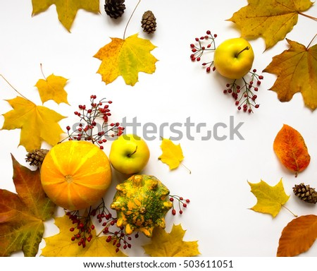 Stylish composition of colorful vegetables, fruits, autumn leaves and berries. Top view on white background. Autumn flat lay