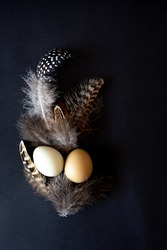 Stylish Easter holiday eggs of natural color on a Black background with feathers. Flat lay, art composition.