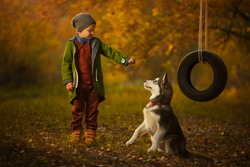 Stylish fashionable young boy playing with husky puppy dog in the woods. Near wheel swing. Autumn, the sun shines brightly. Modern man, he has family. Fashion style, vintage