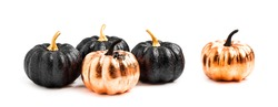 Stylish Halloween decorations. Shiny Decorative Pumpkins. Minimal creative stillife. Isolated
