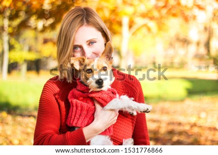 Stylish hipster woman hugs her puppy Jack Russell in autumn park, autumnal mood. Romantic day with a pet. The dog is wearing a sweater. girl looking directly at the camera Outdoors or outdoors.