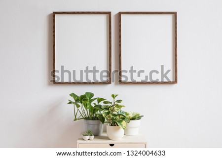 Stylish home interior with two brown wooden mock up photo frames above the wooden shelf with plants composition in design pots. Modern and minimalistic concept of white room decor.  #1324004633