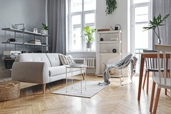Stylish home nordic living room with design sofa, family table, plant, white and grey bookstand on the wall. A lot of plants in design pots. Brown wooden parquet.Concept of minimalistic interior.