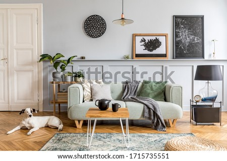 Stylish interior design of living room with modern mint sofa, wooden console, coffee table, lamp, plant, mock up poster frame, pillows, plaid, decoration and beautiful dog lying on the floor.
