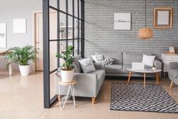Stylish interior of living room