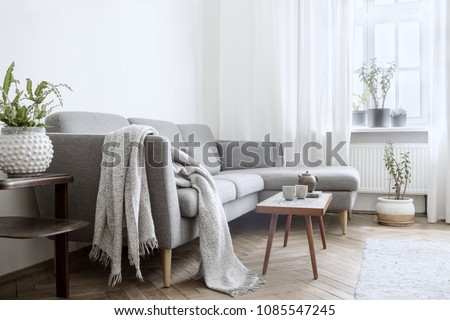 Stylish interior of living room with small design table and sofa. White walls, plants on the windowsill. Brown wooden parquet.