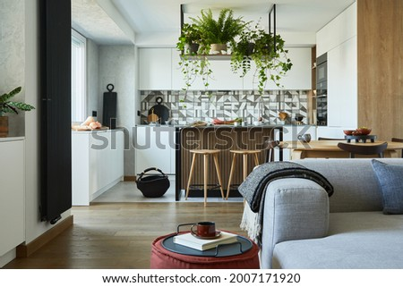 Stylish living room interior design with grey sofa, pouf and personal accessories. Dining space and kitchen on the background. Creative walls with woode pannels. Minimalistic style and plant love. Foto d'archivio ©