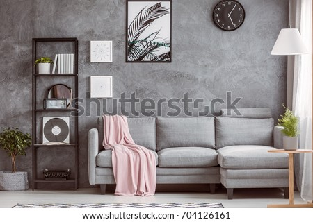 Stylish living room with comfortable grey corner sofa, small tree on the floor and black clock on dark wall