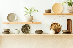 Stylish open space kitchen with accessories, plants and plates. Design interior of cozy kitchen