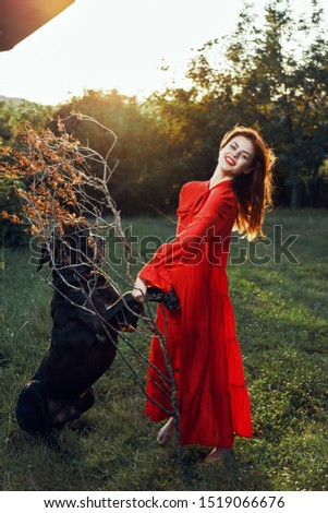 Stylish stylish woman in a forest glade with a black Great Dane